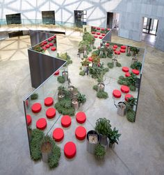 Chae Pereira Architects — Zzum – Universe Expansion