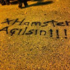 Xhamster:))