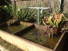 Water is recirculated via galvanised pipe Garden Sink, Water Garden, Garden Art, Garden Ideas, Weatherboard House, Queenslander, Backyard Patio Designs, Fun Backyard, Outdoor Sinks