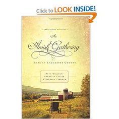 I like inspirational romances, especially those about the Amish