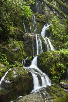 Place of a Thousand Drips - Smokey Mountain Waterfall