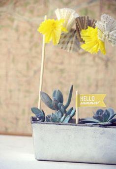 cute little succulent garden. love the little cupcake liner garland!