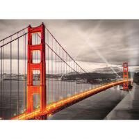 Eurographics San Fran Photography B&W Jigsaw Puzzle