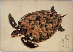 Marine Atlas, early 19th Cent, Japanese & Chinese