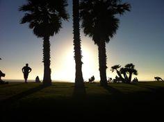 San Diego : ses plages, ses surfeurs, ses couchers de soleil