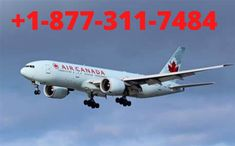 Air Canada flight change fee Retrieve your booking to change or cancel your flight, view/print your itinerary, request an upgrade, add your passport info, check in and much more. Sign in to your Flight Pass account to make changes to or cancel one or more of your Flight Pass bookings. Air Canada Rouge, Air Canada Flights, Flight Schedule, Airline Reservations, Business Class, Future Travel, Trip Planning, Change, Passport