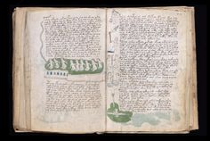 A bizarre medieval manuscript written in a language no one can read has baffled the world's best cryptologists. Can the hive mind finally unlock its secrets?