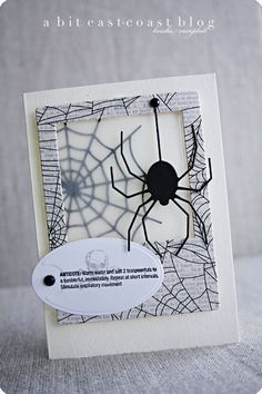 Halloween card black and white.  Spider and web.