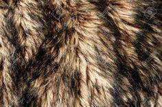 Afbeeldingsresultaat voor textuur beesten