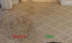 Berber Carpet Before and After Photos Cleaned by Heaven's Best #6