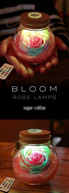 Sugar Cotton Sugarandcotton On Pinterest