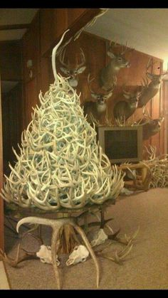this has @Emma Zangs Vogel written all over it  #deer #hunting