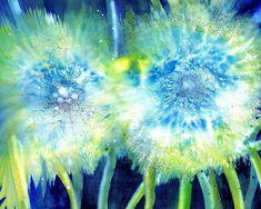 Dandelions Art Print featuring the painting Dandelion seed pod make a wish by Sabina Von Arx and Regina Panizzon All Poster, Poster Prints, Posters, Canvas Art, Canvas Prints, Art Prints, Original Artwork, Original Paintings, Dandelion Flower