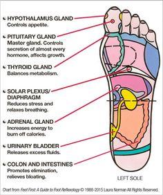 DIY Foot Reflexology: 7 Pressure Points To Reduce Stress & Boost Metabolism