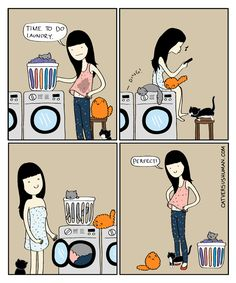 10 Oldie But Goodie Hilarious Comics From Cat Versus Human - World's largest collection of cat memes and other animals Crazy Cat Lady, Crazy Cats, Cat Vs Human, Cat Facts Text, Living With Cats, Cat Vs Dog, Cat Jokes, Cat Comics, Owning A Cat
