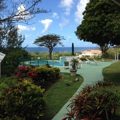 Housesitting assignment in Barbados