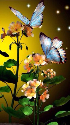 Flower Phone Wallpaper, Butterfly Wallpaper, Nature Wallpaper, Wallpaper Backgrounds, Iphone Wallpaper, Beautiful Flowers Wallpapers, Beautiful Butterflies, Beautiful Birds, Cute Wallpapers