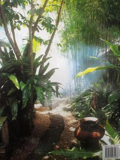 Tropical Texana: GARDEN BOOK REVIEW: THE TROPICAL GARDEN by ...