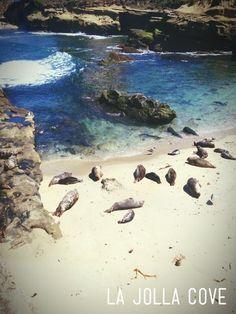 La Jolla Cove, Greater San Diego, California