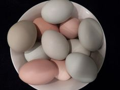 Beautiful naturally colored eggs from our variety of  laying hens