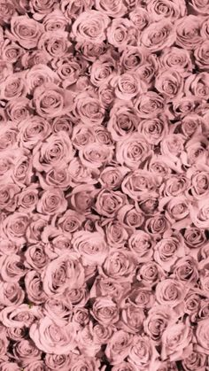 Image about rose in flowers🌷 by pink wallpaper design, flower wallpaper, designer Pink Wallpaper Design, Flower Phone Wallpaper, Pink Wallpaper Iphone, Pink Iphone, Flower Wallpaper, Wallpaper Uk, Wallpaper Quotes, Flower Backgrounds, Vintage Backgrounds