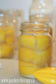 Preserved Lemons Recipe - Garden Therapy