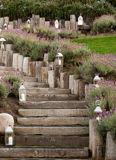 Lavender lined timber stairs