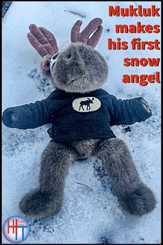 Hiking in the Sierra Nevada Mountains Mukluk encountered his very first snowfall and of course had only one thought -- he had to make his first snow angel. See how the snow angel turned out on our website. He's very proud of it. #snowangel #firstsnow #stuffies #teddybears #travelingteddybear #travel Family Cruise, Family Travel, Nevada Mountains, Adventure Bucket List, First Snow, Snow Angels, Sierra Nevada, Best Places To Travel, World Traveler