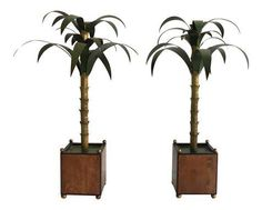 Shop models and figurines at Chairish, the design lover's marketplace for the best vintage and used furniture, decor and art. Vintage Italian, Palm Trees, Decorative Accessories, Junk Drawer, Palm Beach, Plants, Model, Design, Art