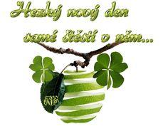 Good Morning, Plant Leaves, Night, Buen Dia, Bonjour, Good Morning Wishes
