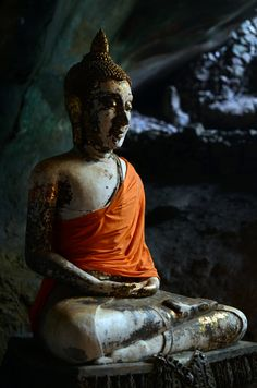 """""""If you truly loved yourself, you could never hurt another."""" - Gautama Buddha"""