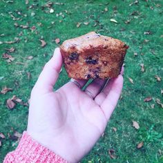 I have a very busy day and need all the help I can get! I made these mixed berry muffins last night for breakfast on the go 😎😍 . . . . .  #animallover #vegansofig #noanimalsharmed #vegan #veganfoodshare #yvreats #dessert #nomnom  #baking #homemade #crueltyfree #plantbased #vegansofig #dairyfree #eggfree #treatyoself #whatveganseat #breakfast #muffin #berry #inahurry #healthy