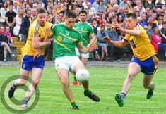 All the action shots from Leitrim v Roscommon - GALLERY - Photo 1 of 65 - Leitrim Observer Semi Final, Shots, Action, Gallery, Group Action