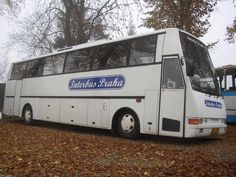 Oasa HD12 Coaches, Modern, Image, Design, Trainers, Trendy Tree