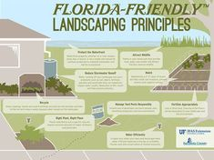 With this infographic, remembering the Florida-Friendly Landscaping principles has never been easier.