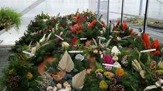 Blumen Markus in St. Georgen -   Allerheiligengestecke 2015 Christmas Wreaths, Holiday Decor, Plants, Home Decor, Flowers, Dekoration, Decoration Home, Room Decor, Plant