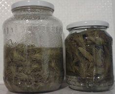 Gyógyszer fenyőrügyből, mely nagyon ízletes! - Egészségtér Vodka, Mason Jars, Syrup, Mason Jar, Glass Jars, Jars