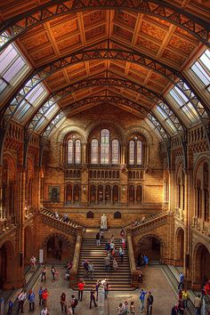 London Natural History Museum with the children