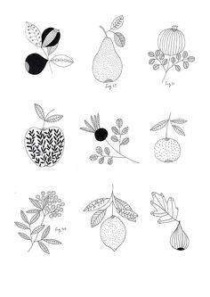 Fruit drawing ideas food illustrations 22 ideas for 2019 Art And Illustration, Food Illustrations, Botanical Drawings, Botanical Prints, Gouts Et Couleurs, Handpoked Tattoo, Fruits Drawing, Posca Art, Floral Drawing