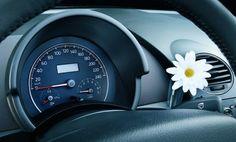New Beetle - Interior    Este auto es muy de nena, lo amo.