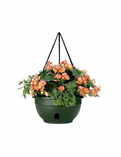 Self-Watering Hanging Baskets These are wonderful and drastically reduce the ti. Self-Watering Han Flower Planters, Hanging Planters, Hanging Baskets, Gardening Zones, Container Gardening, Urban Gardening, Plant Basket, Thing 1, Self Watering