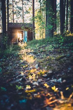 Just a little place in the woods. Perfect!
