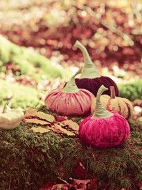 burda style Herbst-Deko: Samtkürbisse