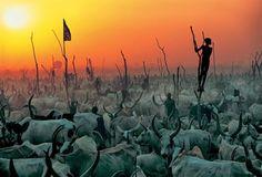 Dinka del Sudan, gruppo etnico nilotico Nilo-sahariana. Foto di Carol Beckwith e Angela Fisher