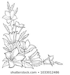 Illustration of Corner bouquet with outline flower, leaf and bud in black isolated on white background. vector art, clipart and stock vectors. Flower Pattern Drawing, Flower Drawing Tutorials, Flower Outline, Flower Sketches, Floral Drawing, Flower Design Drawing, Flower Drawings, Corner Drawing, Flower Boarders