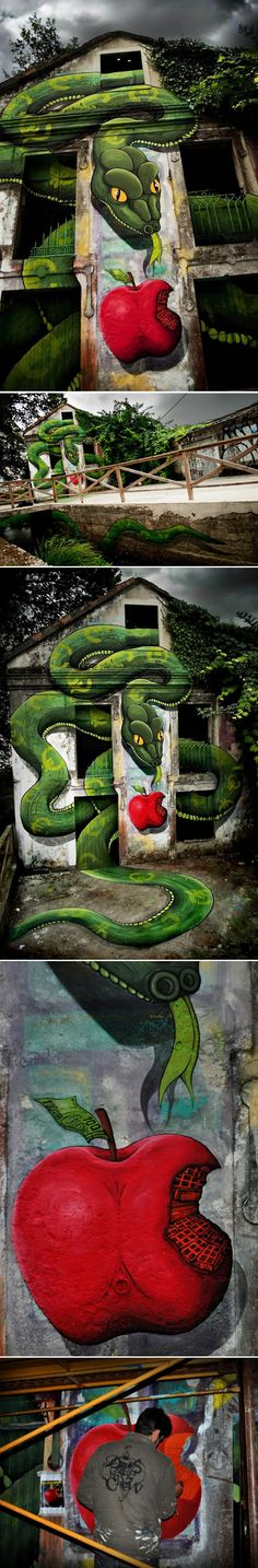 Serpent géant par le graffeur Sokram    Je vous laisse apprécier cette peinture monumentale du street-artist Sokram. Ce serpent dont le corps débute dans le canal jouxtant la maison et termine dans l'habitation est le symbole de notre société marchande mais aussi un rappel biblique à la tentation.