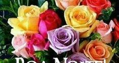 Boa Noite! Flowers, Plants, Google, Roses, Chocolate, Star, Good Nite Images, Images Of Good Morning, Good Night Sweetheart