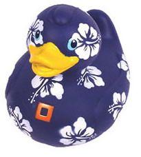 Aloha Duck