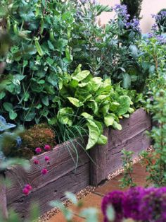 A cornucopia of ideas for creating raised beds.