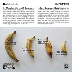 Burro Banana & Baby Bananas are alkaline & natural , not hybrid (alkaline diet recipes dr sebi) Alkaline Diet Recipes, Healthy Recipes, Healthy Snacks, Health And Nutrition, Health And Wellness, Health Tips, Health Articles, Electric Foods, Food Facts